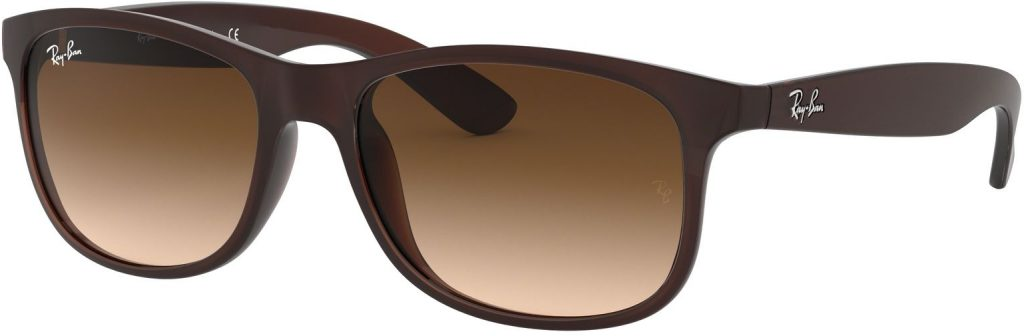 Ray-Ban Andy RB4202-607313-55