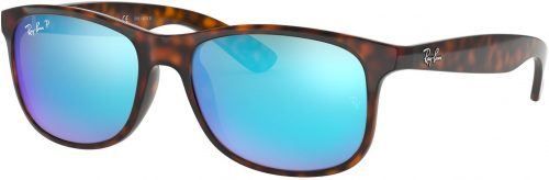 Ray-Ban Andy RB4202-710/9R-55